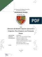 Monografia MUSCULOS DEL MIENBRO SUPERIOR.docx