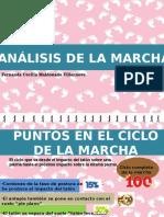 Marcha Analisis