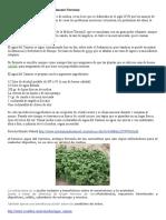 Fórmula del Agua del Carmen.doc