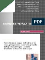 trombosisvenosaprofunda-120824225908-phpapp02