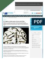 La Vagina, Nicho Para El Virus Del ZikaEFE Futuro