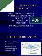 EmbriologiadelaColumnaVertebralyDeformidaddeSprengel.pdf