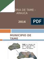 Gastronomia Municipio de Tame