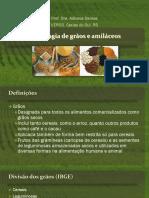 aula 1 - Tecnologia de grãos e amiláceos .pdf