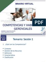 Competencias y Habilidades Ccls1 2014
