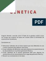 Genetica de Mendel