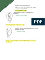 Umbilical Cord Prolapse