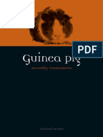 Animal-Guinea-Pig.pdf