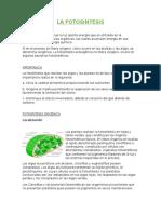 Resumen Ecología