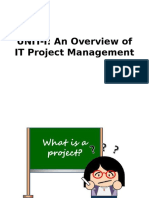 An Overview of IT Project Management