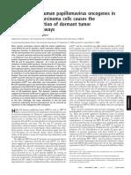 Repression of Human Papillomavirus Oncogenes