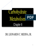8 Carbohydrate Metabolism