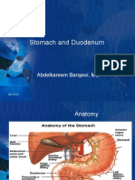 Stomach and Duodenum