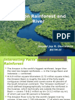 1 Amazon Rainforest and River