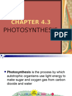 AGR122 CHAPTER 4.3-PHOTOSYNTHESIS baru.ppt