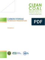 Program Plan Carbon Storage