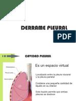 derrame pleural.pdf