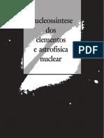 Nucleossintese Dos Elementos e Astrofisica Nuclear