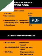 Ulceras de Pierna