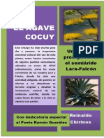EL AGAVE COCUY Una Planta Maravllosa en El Semiarido Lara- Falcón