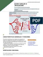 Circulacion Capilar oMicrocirculacion
