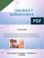 Mordeduras y Picaduras