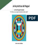 Manual de Practicas Del Nagual-cjc