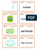 Flashcards Environment