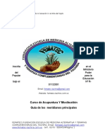 GUIADELOSMERIDIANOSPRINCIPALES.docx