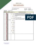 12. COLUM ESTRATIGRAFICA.pdf