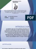 Presentacion de Proyecto Papanicoalou En