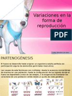 Variaciones en La Forma de Reproducción