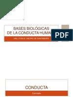 Bases Biológicas Completa