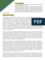 DERIVADOS DEL MAÍZ EN LA VIDA DIARIA.docx