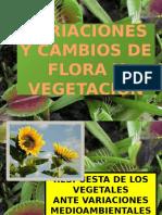 Variaciones y Cambios de Flora y Vegetacion_botanic_expo