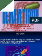 Tifoid2010