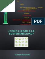 como llegar a la sustentabilidad