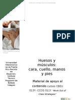 Huesos y Músculos.web Page