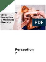 Memahami Persepsi dan mengelola Diversity