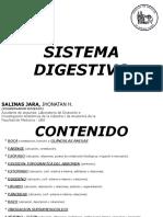 04 Sistema Digestivo
