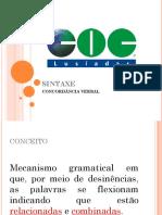 CONCORDÂNCIA VERBAL E NOMINAL.pdf