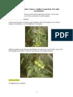 Coltivare pomodori.doc