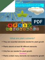 Sfc2202 Agric Chem Nutrient Uptake