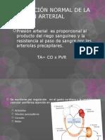 Regulación Normal de La Presión Arterial 1