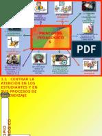 12 Pricipios Pedagógicos (1)
