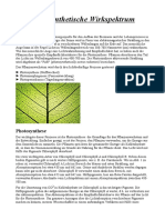 Das photosynthetische Wirkspektrum.odt