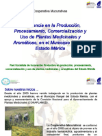 Presentacion Plantas Medicinales Merida Abril 2009 Definitiva(2)