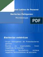 4 Bacterias Patogenas