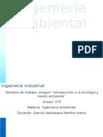 Ensayo de Introduccion a La Ecologia y Medio Ambiente - Copia