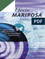ElefectomariposaJoaqundeSaintAymour complto.pdf